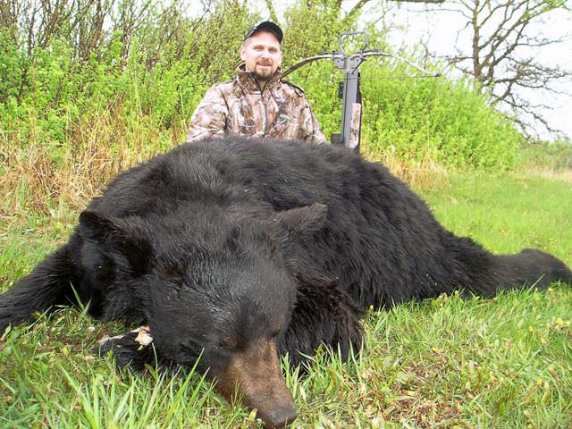 Karl Metzler - Manitoba Black Bear