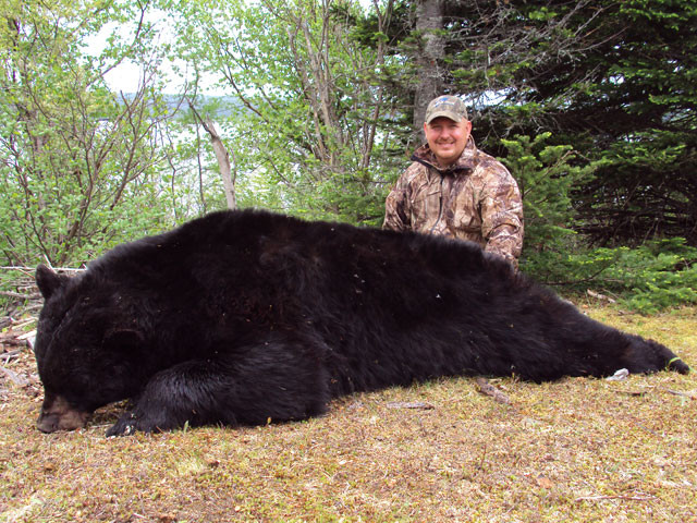Dan Wallace - Newfoundland Adventures Black Bear