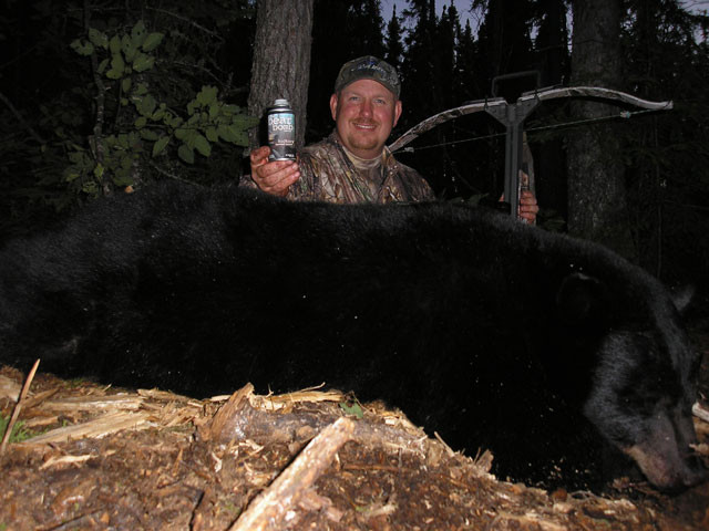 Dan Wallace - Ontario Black Bear