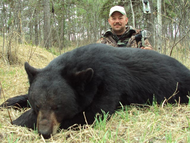 Taft Love - Saskatchewan Black Bear