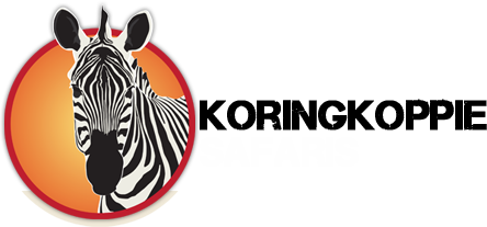 Koringkoppie Safaris